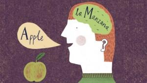 Cerebro-Bilingue